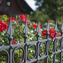 Specialist Service Iron Gates & Railings